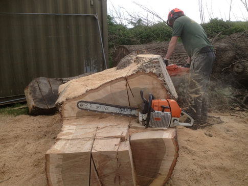 East Devon Firewood